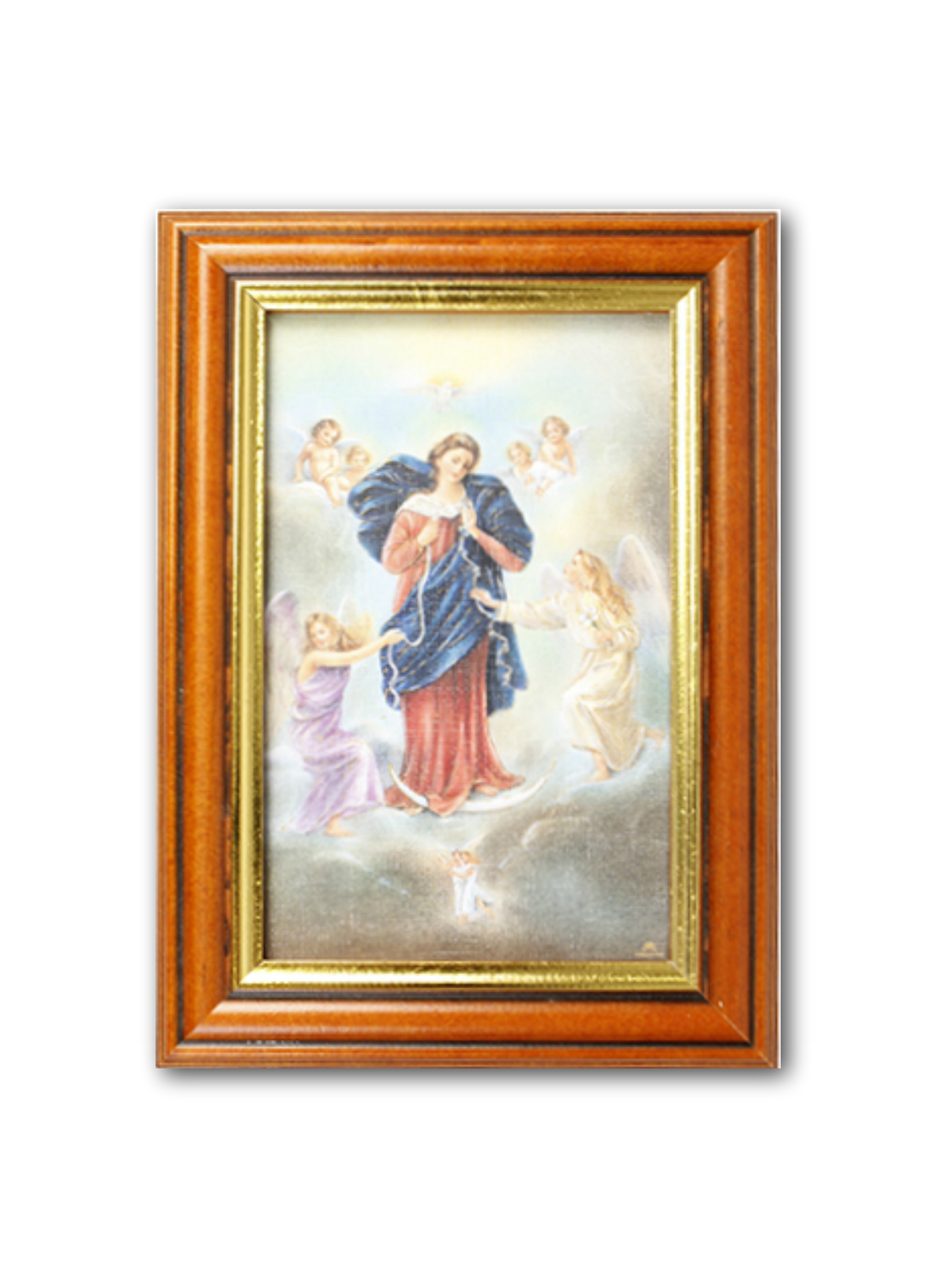Our Lady Untier of Knots Picture