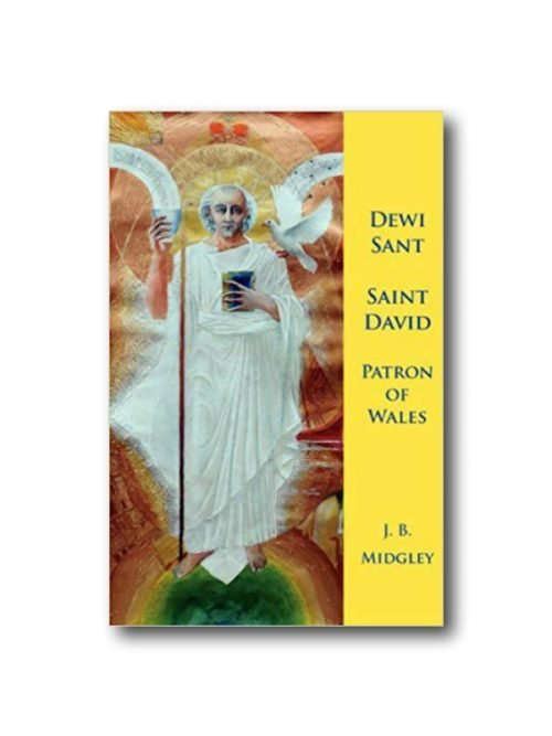 Book about St David